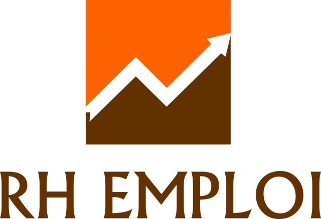 offre d u0026 39 emploi burkina faso   agents v u00c9rificateurs  33